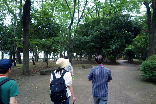 暗い緑道.JPG