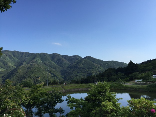 uchiko4
