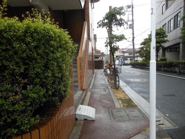 自主管理歩道.JPG
