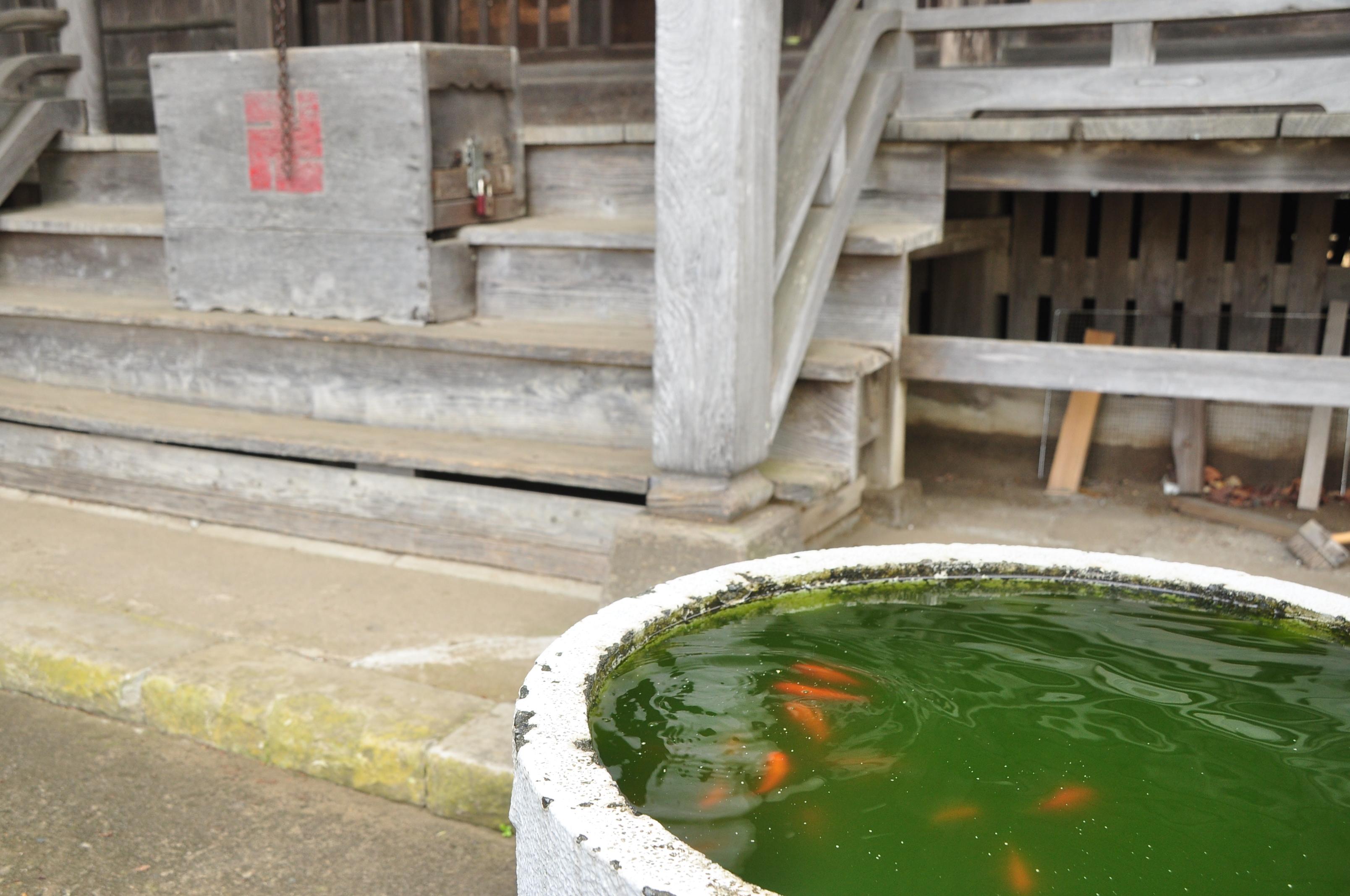 http://ud.t.u-tokyo.ac.jp/blog/_images/DSC_2121.JPG